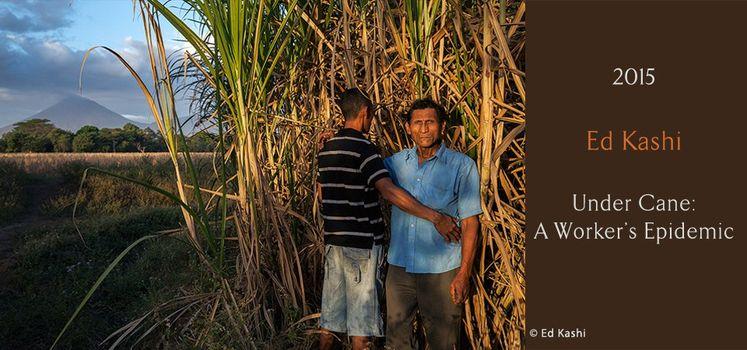 Fotografia etica, festival a Lodi