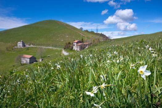 Da Roncola alla croce del monte Linzone