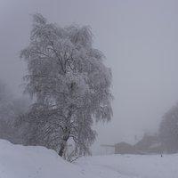 Grazie Cristian, grazie Eugenio, la montagna è sempre bella, ma d'inverno con la neve diventa veramente magica ...