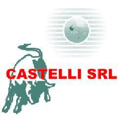 CASTELLI SRL