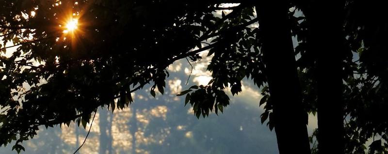 Ultime Notizie: Buone notizie! Sole fino al weekend Ma in pianura occhio alla nebbia