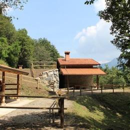 Gaverina, il bioparco si risveglia tra natura e sapori genuini