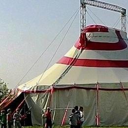 Giocoleria, monocicli e arrampicate  A Telgate il circo non leva le tende