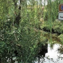 Bassa: il leggendario lago Gerundo Ora la sua storia è raccontata in un libro