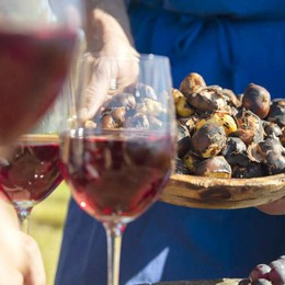L'autunno in Alto Adige è nei masi «Gallo Rosso»