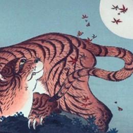 La piccola tigre della Tamaro  per ragionare sulla speranza