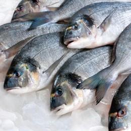 Ok al pesce in tavola Ma attenti alla freschezza