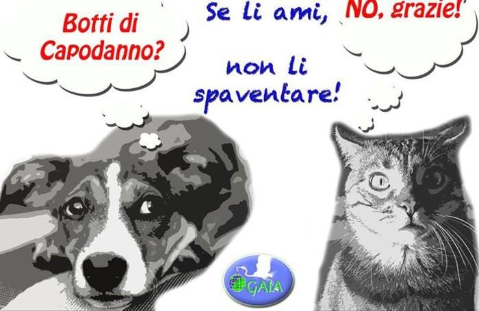 Cani e gatti negli ospedali della Lombardia, ora si può fare