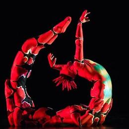 La magia dei Momix a Bergamo - video Opus Cactus, due date al Creberg Teatro