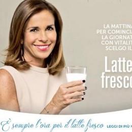 Parodi, Albertini, Cracco e Calabrese: vip  per valorizzare il latte fresco - Video
