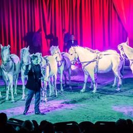 Dal 26 al 18 settembre il circo A Bergamo arriva Armando Orfei
