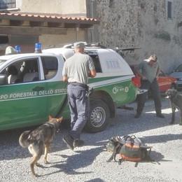 Terremoto, soccorsi anche da Curno Cani specializzati nella ricerca di persone