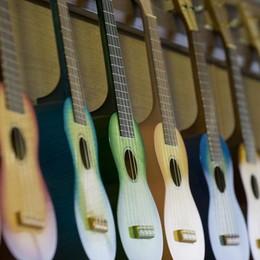 Gli italiani e la musica: che stecca... Giù del 20% la spesa per gli strumenti