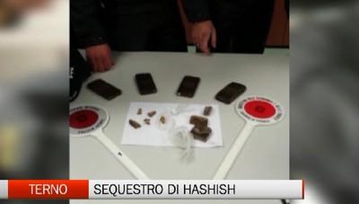 Terno - Polizia locale e Finanza sequestrano mezzo chilo di hashish
