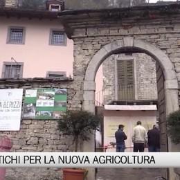 Corna Imagna, semi antichi per una nuova agricoltura