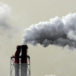 L'ecosistema è in agonia ma Trump torna al carbone