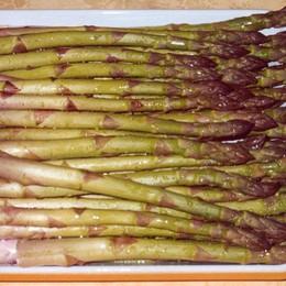 Vuoi raccogliere gli asparagi? A Geromina c'è anche una sagra (bio)