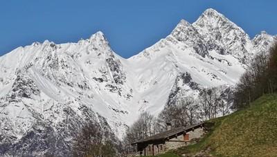 Il sole splende sulla neve in Val Seriana Volpi, marmotte e camosci cercano cibo
