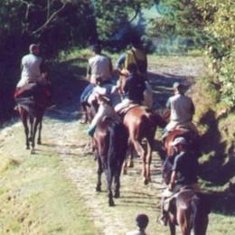 La moto spaventa i cavalli Valsecca: 2 feriti, uno è grave