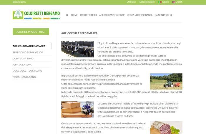 Alcune pagine del portale bergamoexpo.it