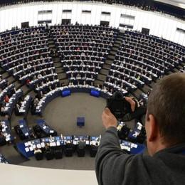 Elezioni europee: otto in campo  Anche Mangano, Fatnassi e Keller