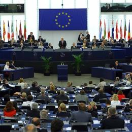 Europee, 11 i bergamaschi in lizza  Tre candidati con il «papà» di Stamina