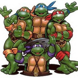 Sono tornate le Tartarughe Ninja  Venerdì serata speciale a Curno