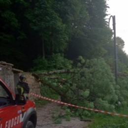 Bossico, parcheggia il quad: malore fatale  Pianta su donna in bici, tragedia evitata