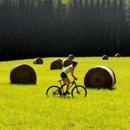 Cicloturismo di eccellenza fra i paesaggi della Romagna