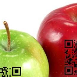 La filiera dei prodotti locali si fa leggere in un Codice