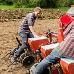 Città e agricoltura si incontrano per creare il cibo del futuro