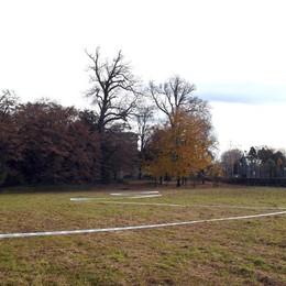 Un Parco Avventura a Torre Boldone Sarà pronto entro la prossima estate