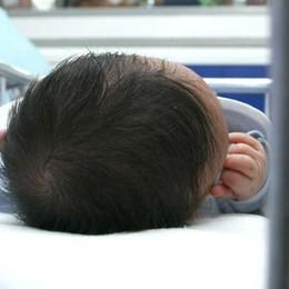 Maternità surrogata e alleanze inattese