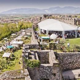Torna «Fiori nella Rocca» Colori ed essenze a Lonato