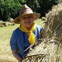 Aveva nostalgia dell'antica mietitura Palmina, 87 anni, al lavoro nei campi