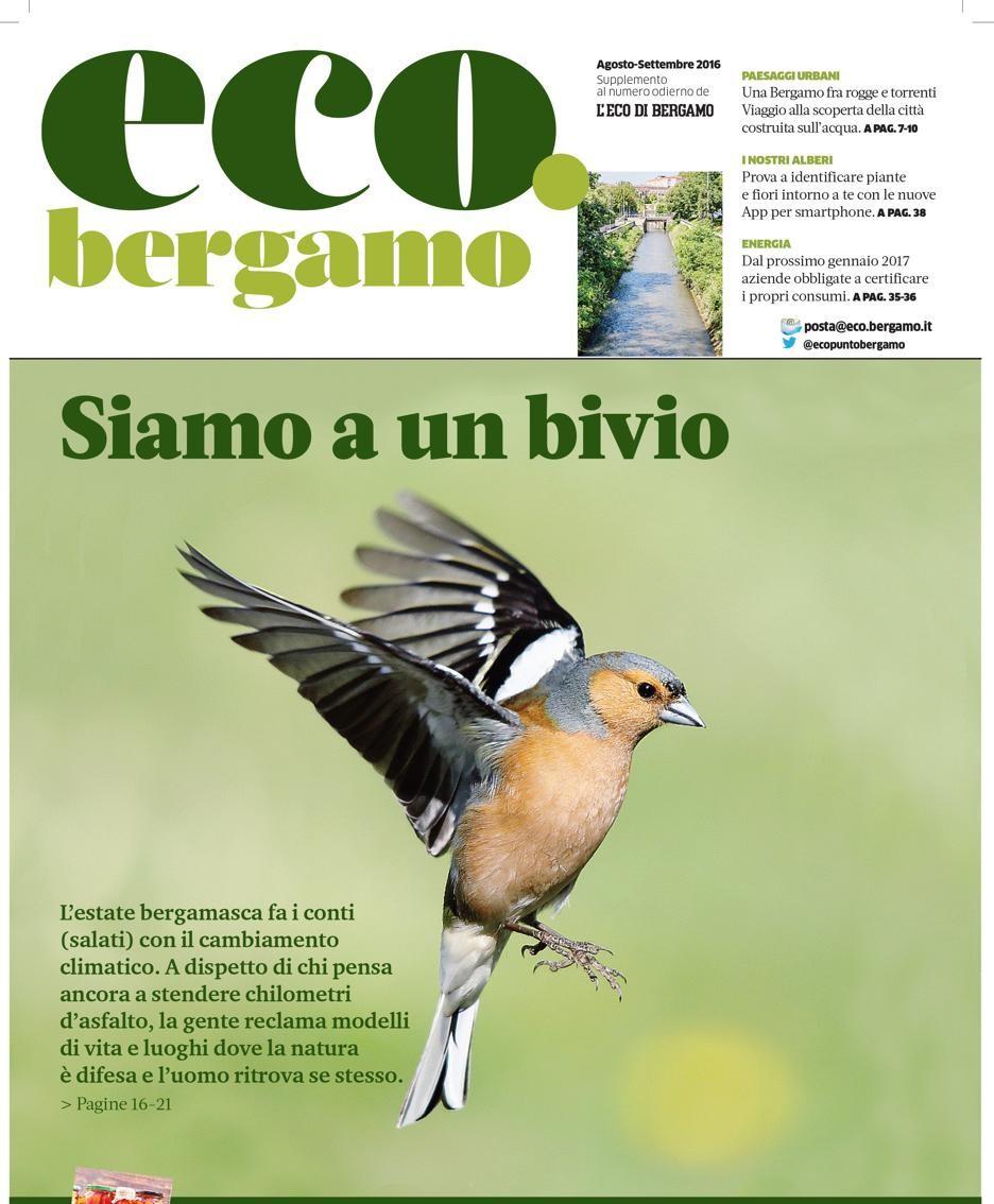 La copertina del numero di agosto della rivista green eco.bergamo
