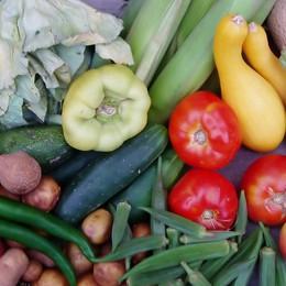 Vegetariani sì, ma non troppo Ecco la dieta «flessitariana»