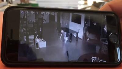 Chiuduno, ladri di piombo in azione Due furti in 24 ore nella stessa azienda