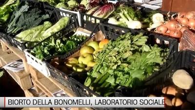 Treviolo, l'esperienza del «Biorto»  Laboratorio sociale e verdure a Km 0