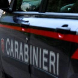 Verdellino, polizza assicurativa  falsa  Denunciata truffatrice 46enne