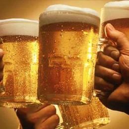 Heineken lancia l'università della birra La sede sarà nel Nord Italia