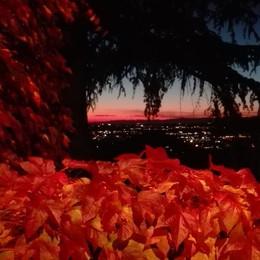 Le foglie rosse sulla città