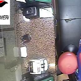 Caravaggio, preso scippatore seriale  I carabinieri: segnalate nuovi casi