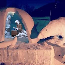 «Presepe polare...»