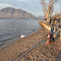 Lago d'Iseo, allarme siccità Situazione critica se non pioverà
