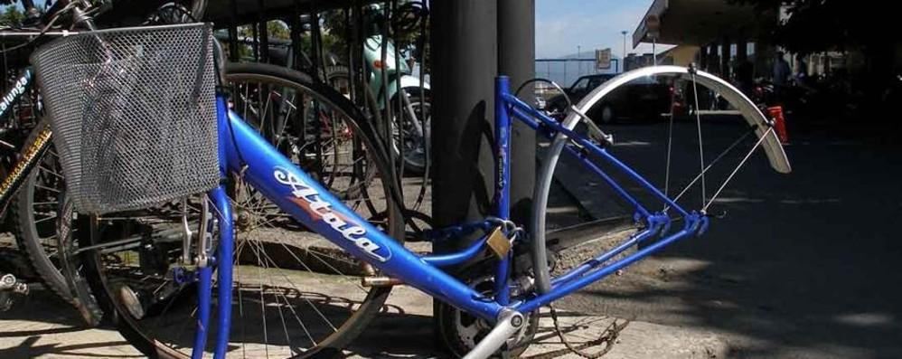 Le bici ritrovate (e non reclamate)? «Palafrizzoni le metta all'asta»