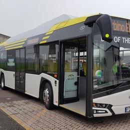 Pensiline smart e corsie preferenziali Prove di metrobus, è la futura «Linea C»