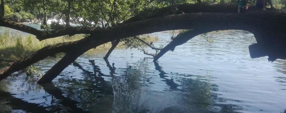 Si tuffa di testa nel fiume Adda L'acqua è troppo bassa, soccorsi al via