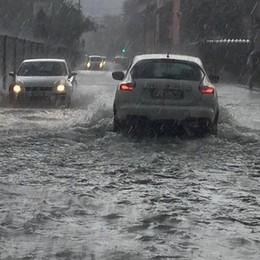 Bombe d'acqua a Bergamo e in provincia Due alberi caduti, chiusa strada a Scanzo