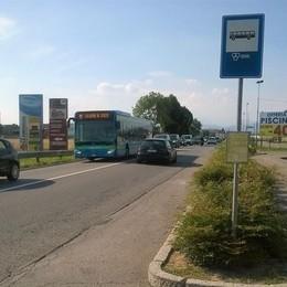 «Quella fermata del bus è pericolosa I nostri figli a Zanica rischiano la vita»